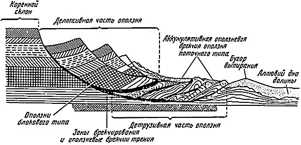 Поперечный профиль берега реки, блоки берегового обрыва, разрушенные оползнем