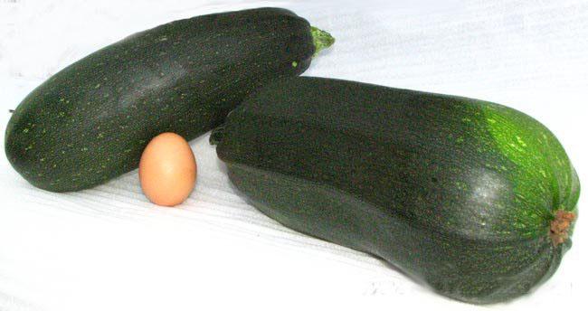 Белые кабачки и цуккини (зеленые и зелено-желтые кабачки). В чем отличия? Польза и вред