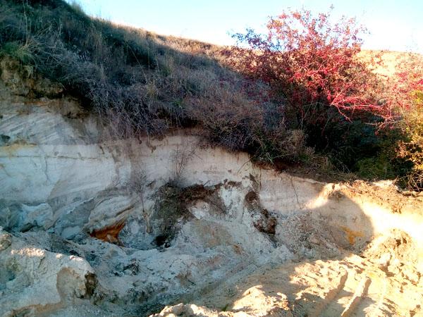 Обнажение горных пород в береговом обрыве у балки Малая Дереклея между селами Старая Богдановка и Козырка