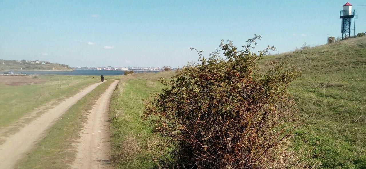 Старая-Богдановка-грунтовая-дорога-вдоль-Дереклейской-балки-и-Нижний-Створный-маяк-для-порта-Октябрьск-на-Бугском-лимане