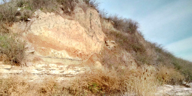 Обнажение коренных и переотложенных горных пород в береговом обрыве Бугского лимана
