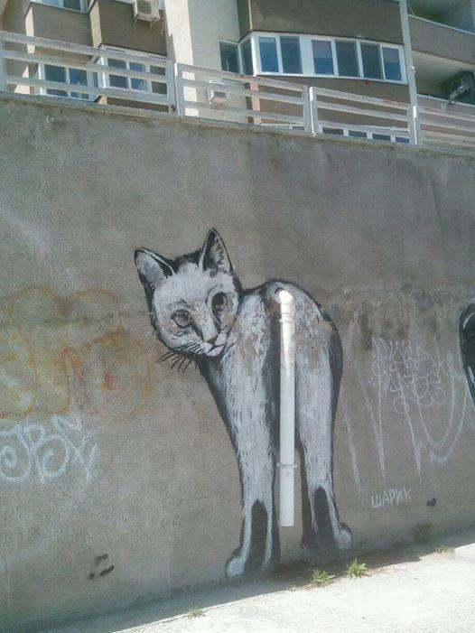 Шарик, знаменитый уличный художник Симферополя многие года и даже десятилетия определяет душу города