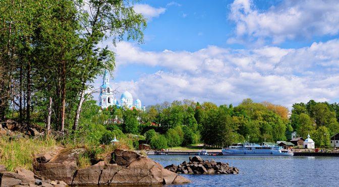 Съедобные растения леса и заброшек: Крым, Россия, Украина